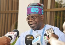 Tinubu urges Fayemi to reposition NGF for national development