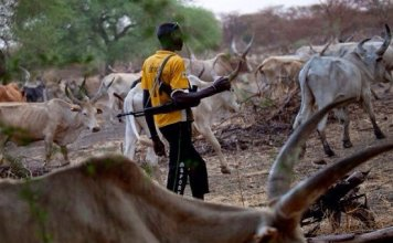Walid expresses regrets over herders' activities in Nigeria