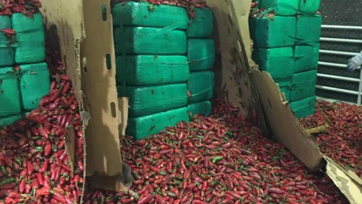Four tons of marijuana seized in a shipment of jalapeños
