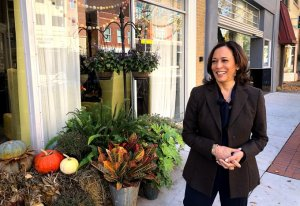 Kamala Harris halts travel through the weekend after two people test positive for COVID-19