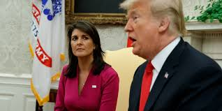 Nikki Haley Thinks Democrats Are Mourning for Soleimani