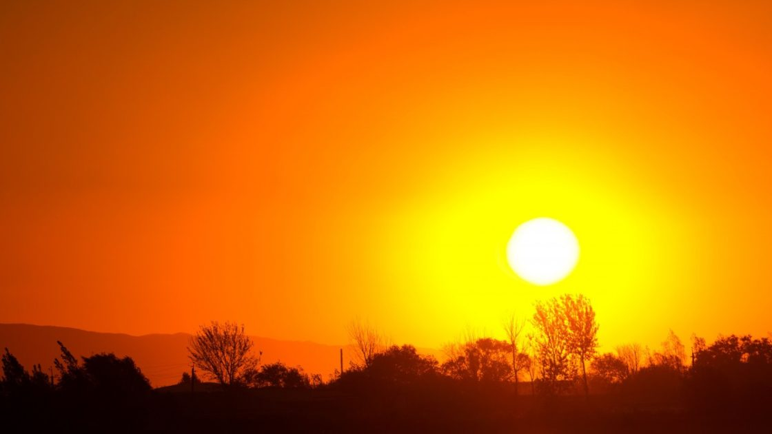 Warmest January on Record Globally