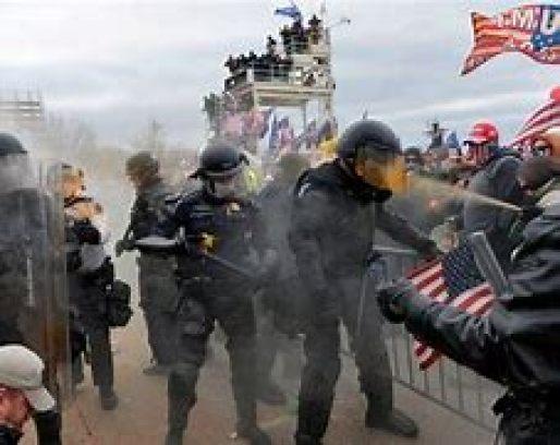 Image result for domestic violent extremism.
