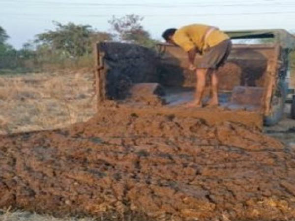 cow-dung-govt-employee