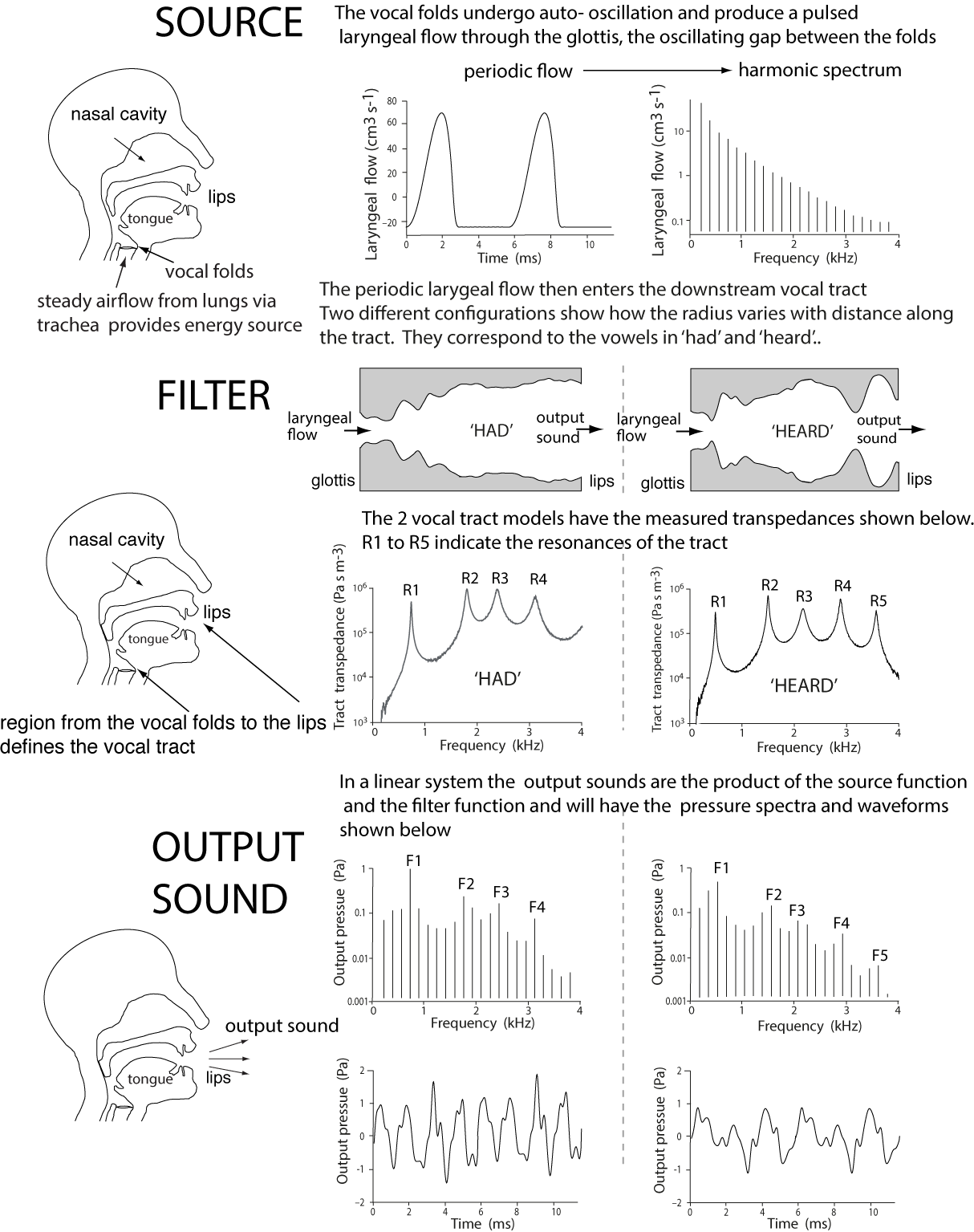 how to wolf whistle diagram wb statesman dash wiring voice acoustics an introduction the science of speech and singing measured source filter