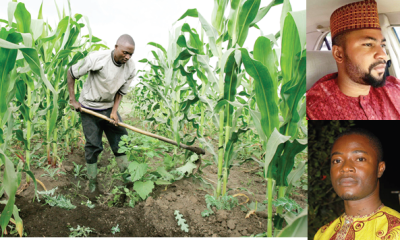 600,000 farmers benefit from e-agric scheme