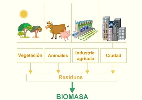 Image result for biomasa de naranjas