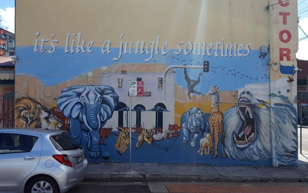 It's Like a Jungle Sometimes – Colin Bebe