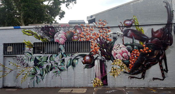 George Street Erskineville Street Art with Beatle and Australian Native Plants