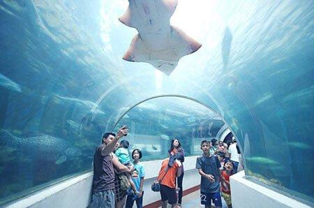 สถานแสดงพันธุ์สัตว์น้ำเฉลิมพระเกียรติ 6 รอบ พระชนมพรรษา