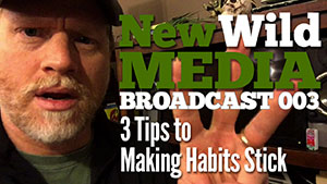 Tips to making habits stick