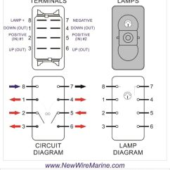 4 Way Switch Wiring Diagram Power At Light Herbivore Carnivore Omnivore Venn Rocker Diagrams New Wire Marine Momentary