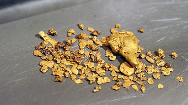 В Магадане заявили, что коронавирус не помешает добыче золота