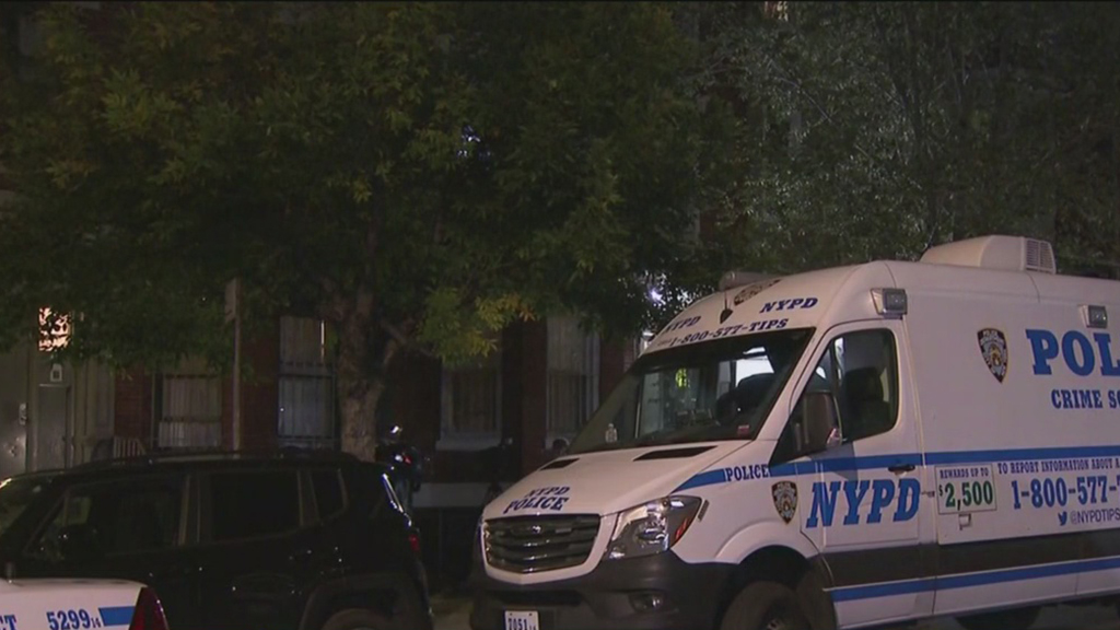 Children Discover Mother Dead Inside Bronx Apartment