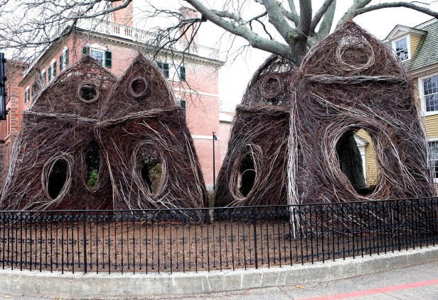 Patrick Dougherty, What the Birds Know, for the Peabody-Essex Museum. Photo Virginia Raguin.