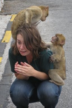Charlotte once lived abroad in Spain. This is a photo from that time. Gibraltar has monkeys, NYC has rats. It is not fair.