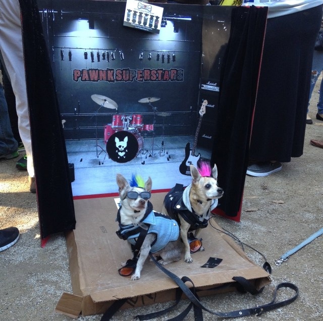 tompkins-square-halloween-dog-4