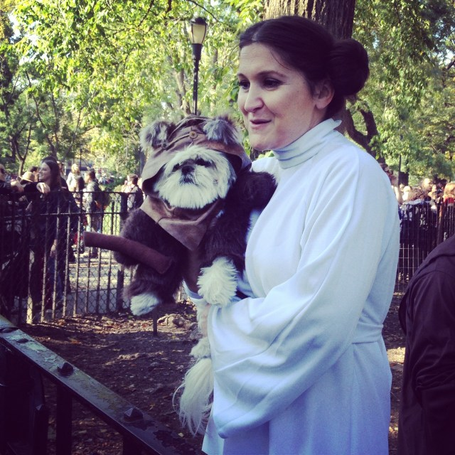 tompkins-square-halloween-dog-6