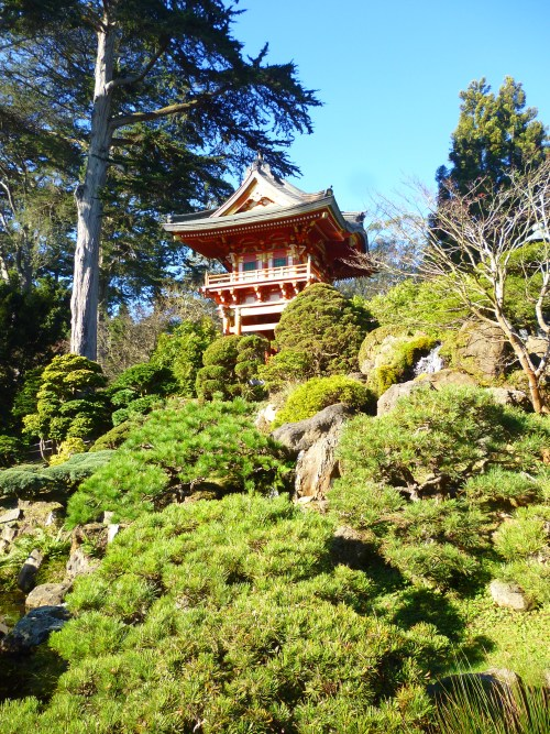 japanese tea garden SF pagota