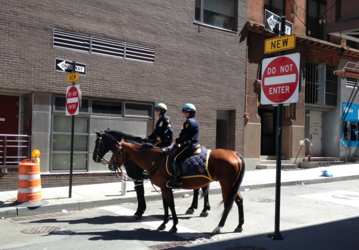 police-officers-horses
