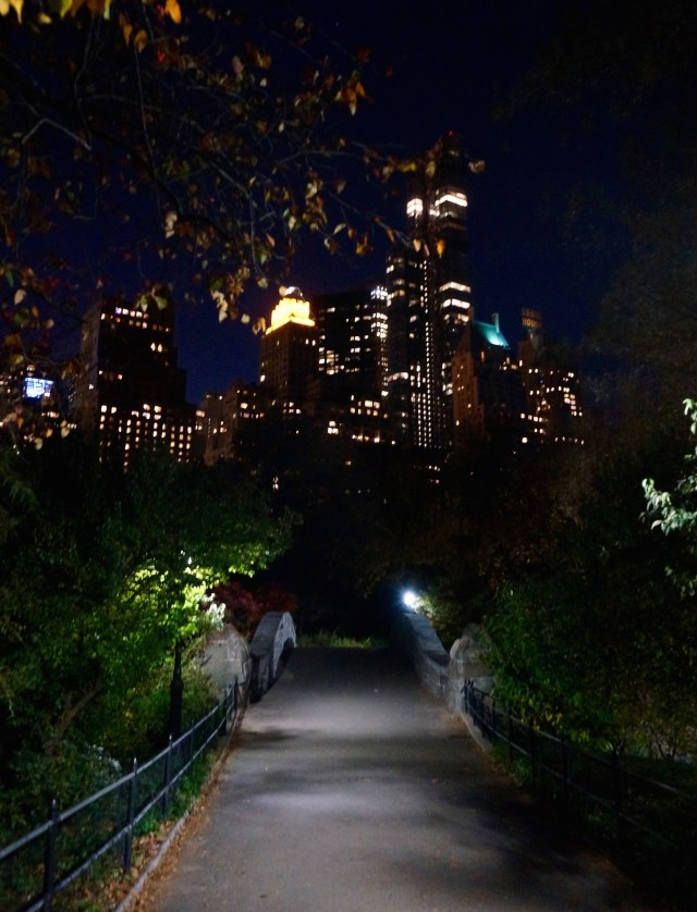 central-park-night-south