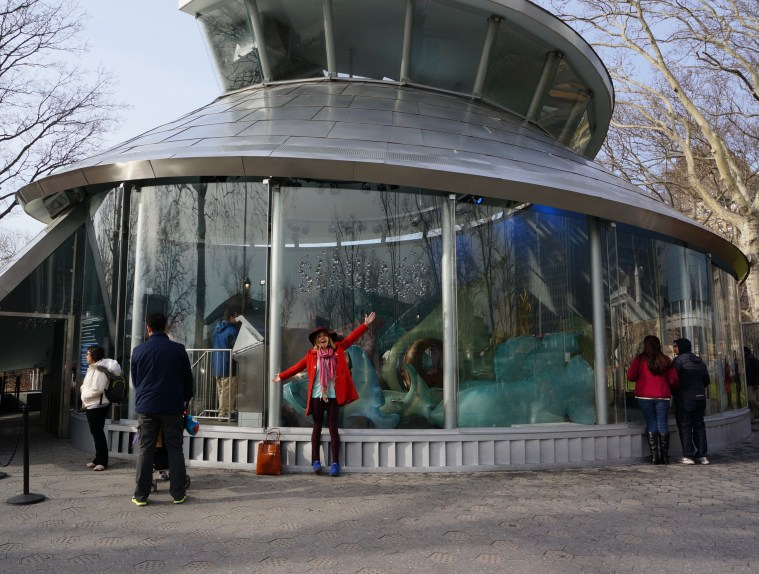 seaglass carousel battery nyc