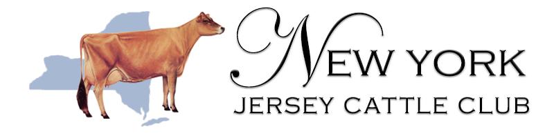 New York Jerseys Logo