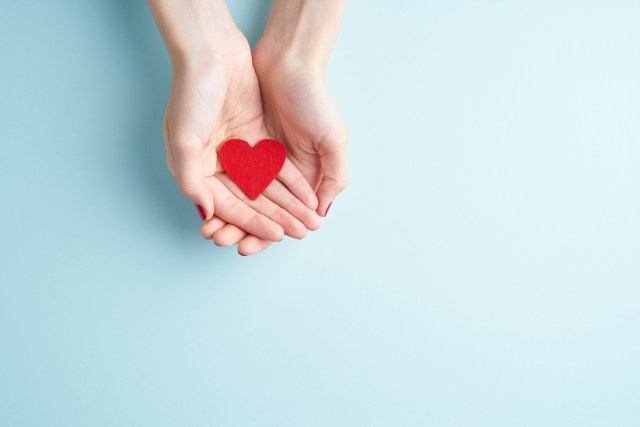 a person holding red heart in hands, donate and family insurance concept, on aquamarine background, copy space top view