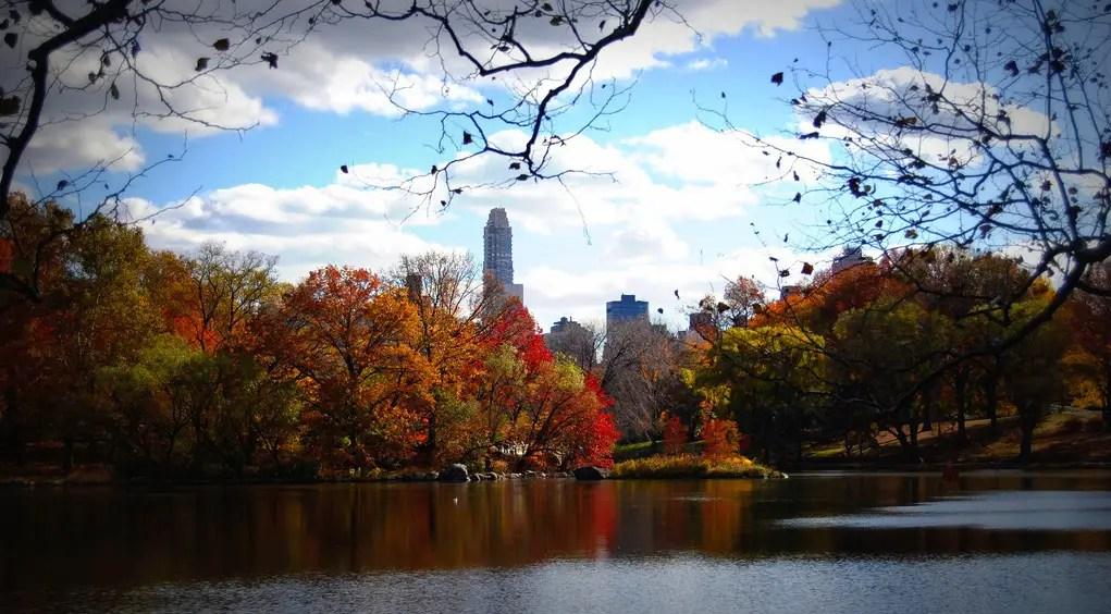 Central Park In Fall Wallpaper Photos Un Automne 224 New York
