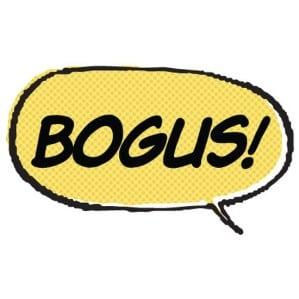 Bogus NYC parking ticket