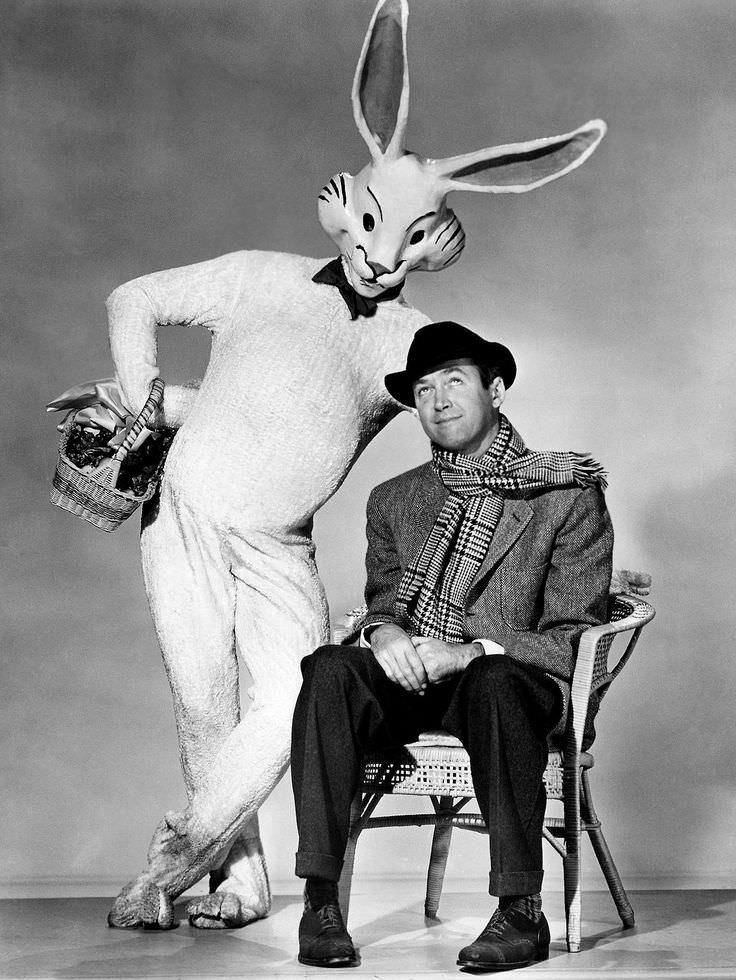 NYC Parking Tickets and Harvey, the Imaginary Rabbit