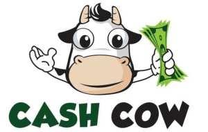 Parking ticket maven or cash cow?