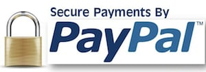 This image is a PayPal logo offering secure payments