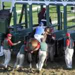 This image represents an appeal that never made it out of the starting gate