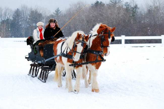 Horse Carriage Dickens Christmas in Skaneateles