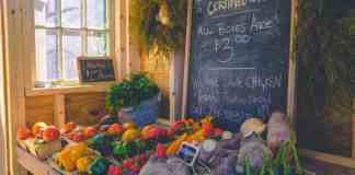 Is Organic Food Good For You