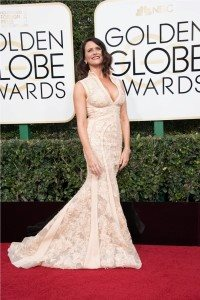74th Annual Golden Globes Awards Red Carpet 31