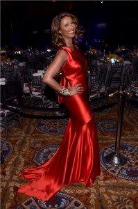 Moët Hennessy Reaffirms Global Partnership with amfAR at the 19th Annual amfAR New York Gala 31