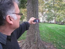 New Paradise Laboratories artistic director Whit McLaughlin in Rittenhouse Square in Philadelphia looking at