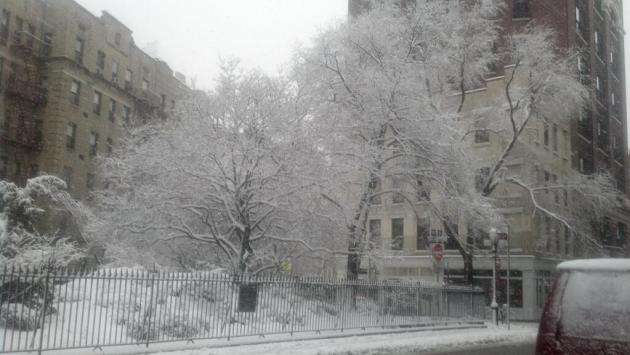 The third winter storm of 2014 -- and, like the others, no canceled shows.