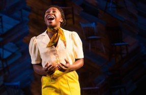"""After a lifetime of being told, and believing, that she's ugly, Celie as performed by Cynthia Erico sings out I'm beautiful, yes I'm beautiful, and I'm here"""" – which provokes the audience to rise up, tear up and cheer."""