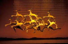 Lion King gazelles