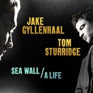 sea-wall-life logo