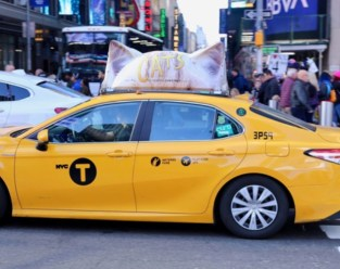 A new NYC marketing gimmick for the movie CATS is putting cats ears on cabs