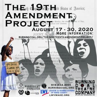 The 19th amendment project