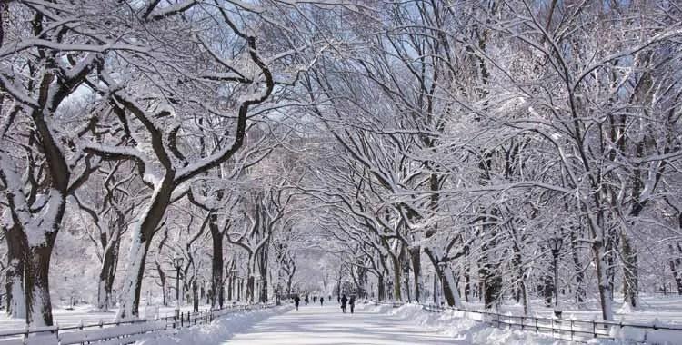 temperatura new york gennaio