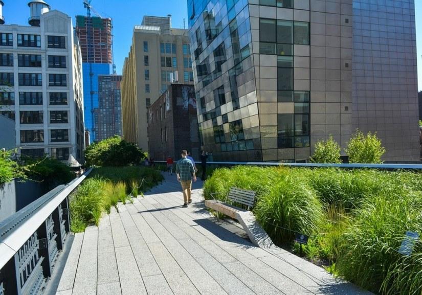 La High Line, un lieu incontournable