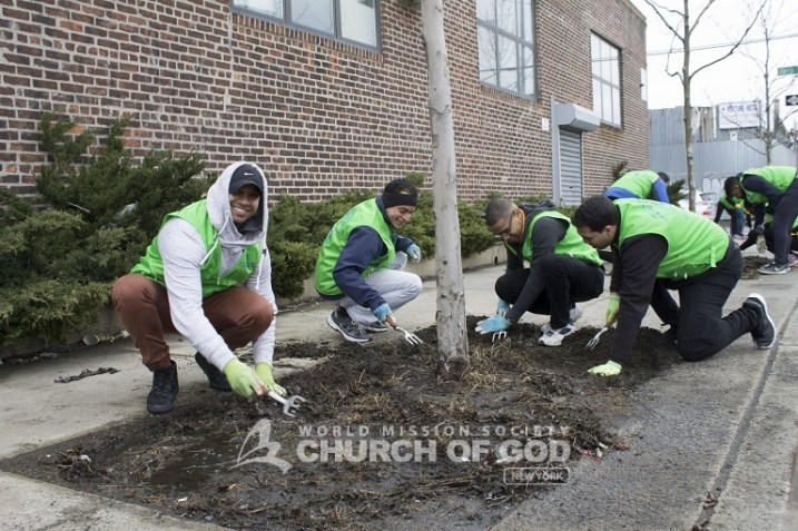 world mission society church of god, church of god, wmscog, church of god in new york, environmental protection, tree stewardship, yellow shirt volunteers