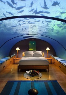 Conrad Maldives Hotel Underwater Rooms