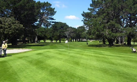 18 Holes of Golf for 1 ($22), 2 ($44) or 4 Ppl ($88), or 10 Rounds of Golf Concession Card ($189) at Shandon Golf Club